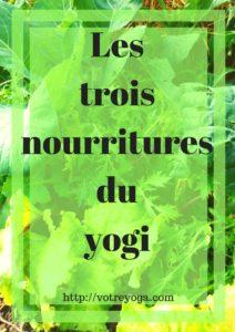 Yoga et alimentation : les 3 nourritures du yogi