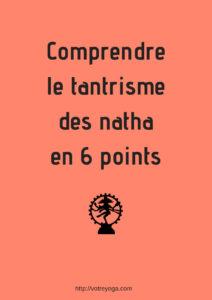 Comprendre le tantrisme des natha en 6 points