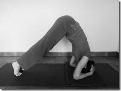 Comment faire la posture sur la tête